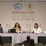 <!--:ja-->インドネシアへの石炭関連融資のストップを! 気候変動との闘いにとって不可欠ーCOP22 共同プレスリリース(2016年11月17日)<!--:--><!--:en-->STOPPING COAL FINANCE FOR INDONESIA CRUCIAL IN THE FIGHT  AGAINST CLIMATE CHANGE(November 17th, 2016)<!--:-->