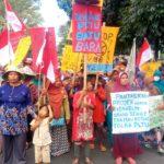 インドネシア・インドラマユ石炭火力 公判開始―農地と環境を守るための住民訴訟