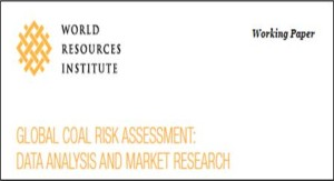 World_Resources_Institute_workingpaper